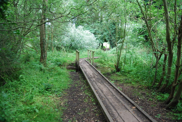 Boardwalk by the River Yare