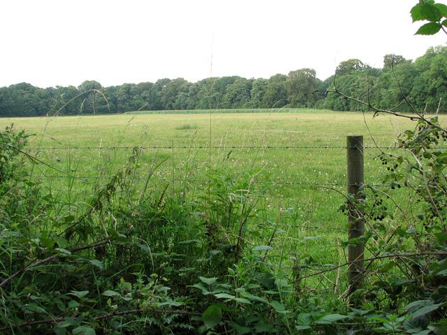 View towards Aves' Gap, Ringland
