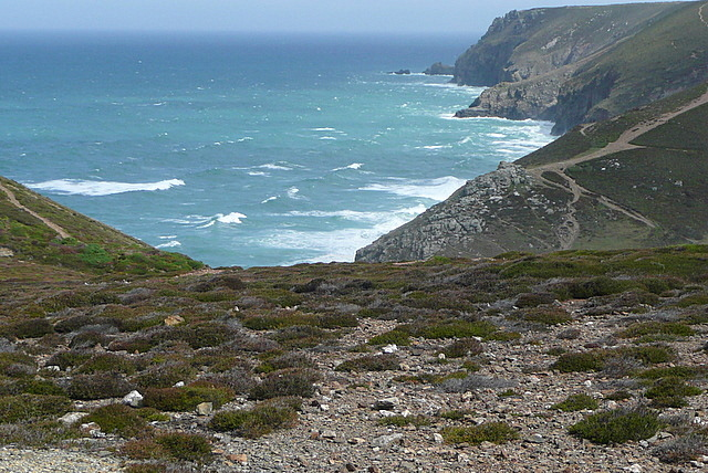 Coast north of Porthtowan