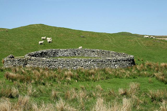 A sheepfold at Black Cleuch