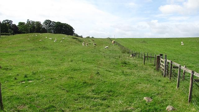 Fields, Preston