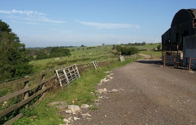 Footpath, Central House Farm