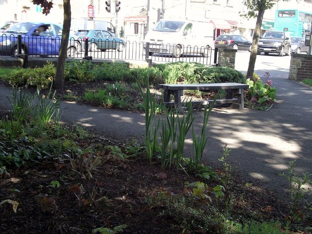 Seat, flowerbeds and trees - rest area