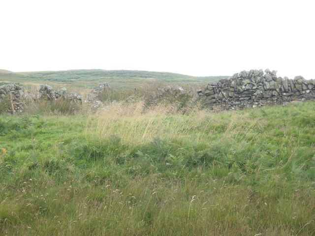Old sheep shelter built into the dry stane dyke