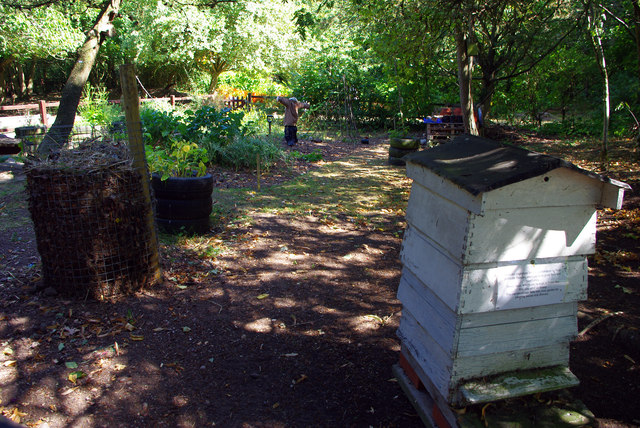 The 'Food for Thought' organic garden, Birmingham Nature Centre