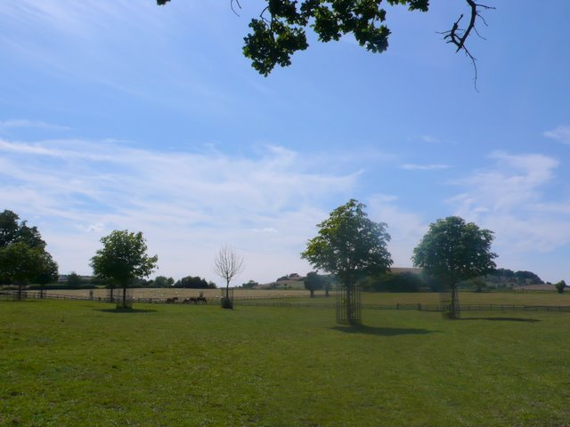 Fields near Admington