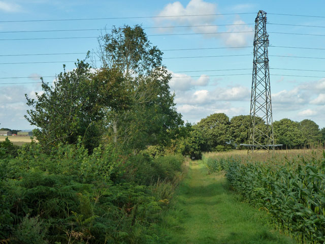 The bridleway goes under the power line