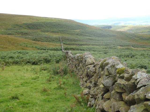 A fine Galloway Dyke running down towards Knockman Burn