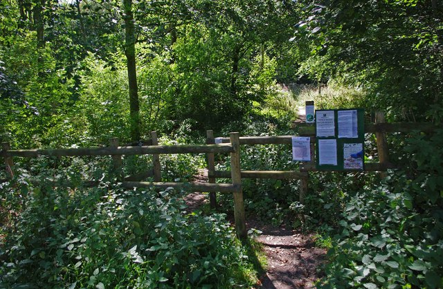 Main entrance to Trench  Wood, near Sale Green
