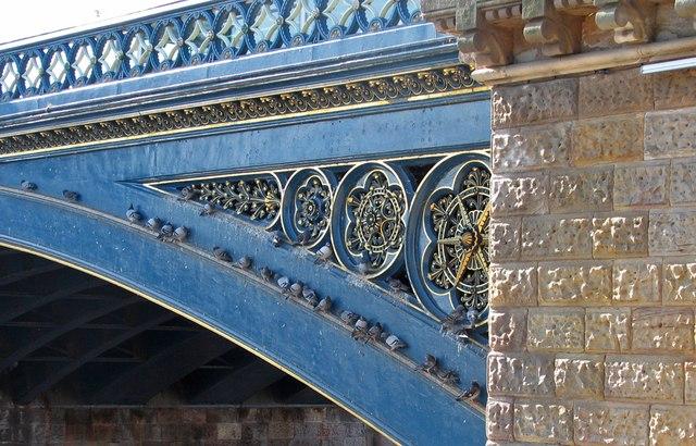 Trent Bridge pigeons