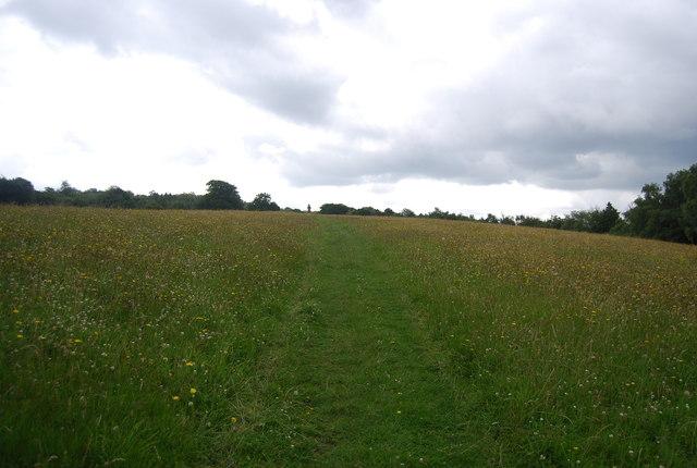 Sussex Border Path, Valewood Park