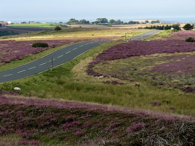 Smeathorns road near Lockwood Beck reservoir