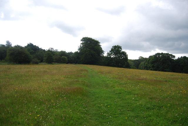 Serpent Trail, Valewood Park