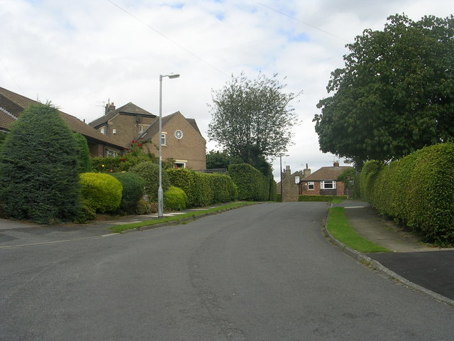 Harper Grove - looking towards Harper Avenue