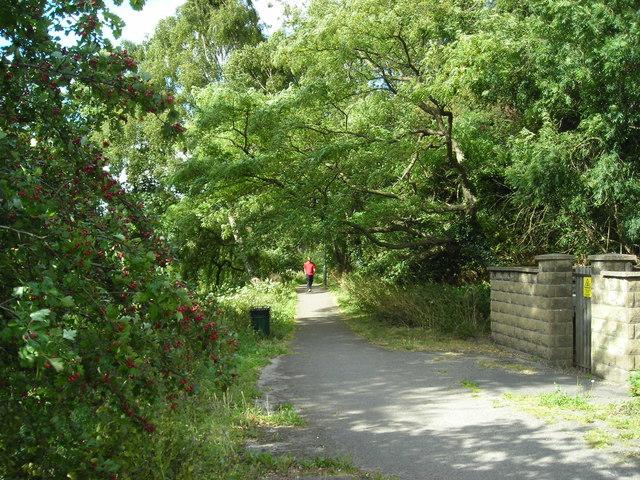 Quarry Lane Local Nature Reserve