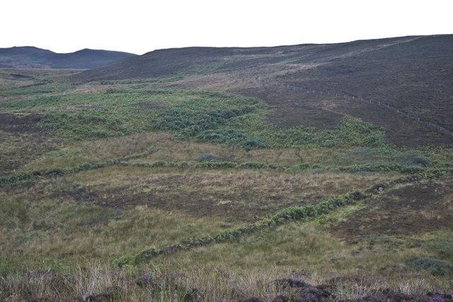 Old Field Boundary near Stremnishmore