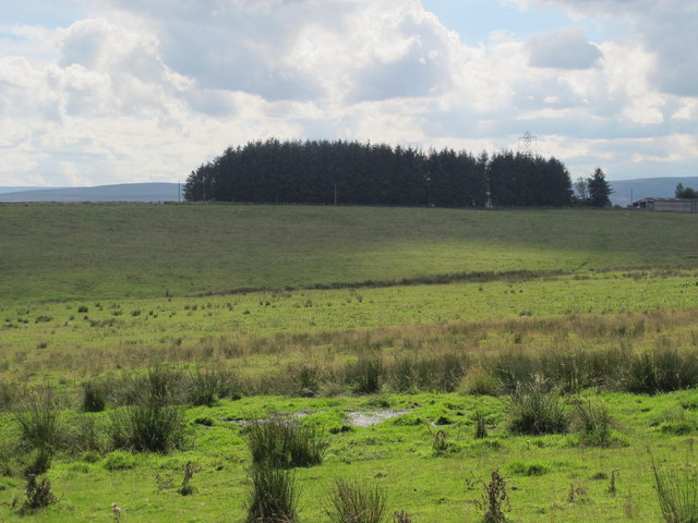 Farmland northeast of Hardriggs