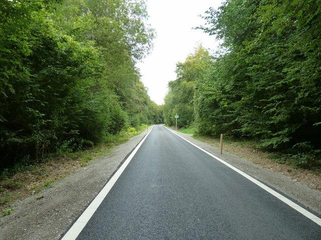 Oil well road through Nightingale Wood