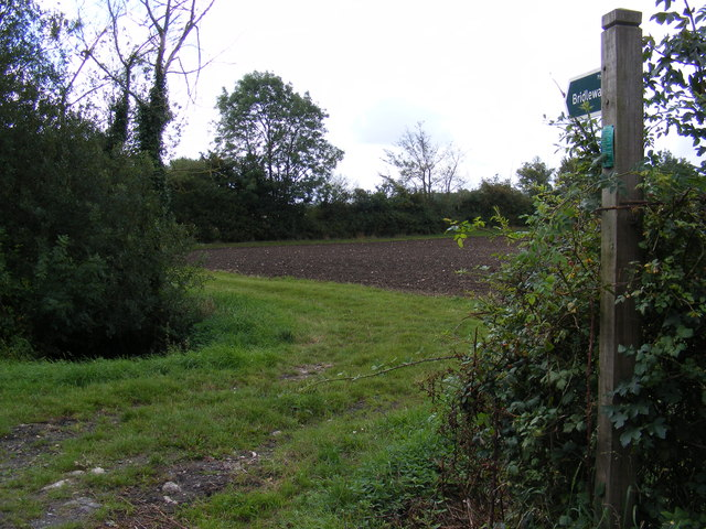 Bridleway to Bedfield Road & the footpath to the A1120