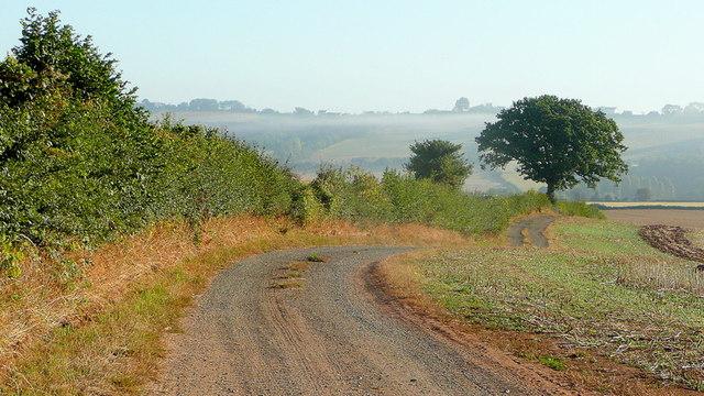 Farm track after harvest