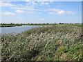 TL3772 : Ouse Fen phase 1 by Hugh Venables