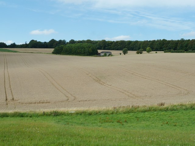 Isolated barn between Singleton Forest and Broadham House