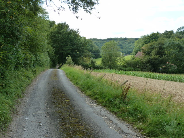 Footpath 441 alongside Lady Wood