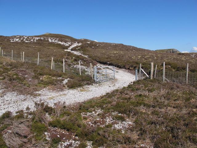 Sligo: Copes Mountain. Limestone Track