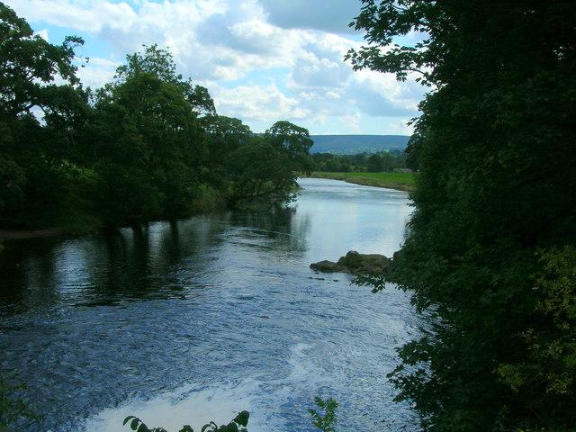 River Wharfe, south of Bolton Abbey