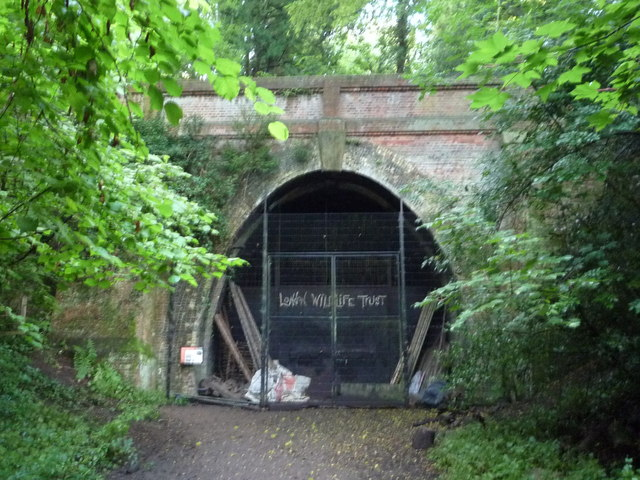 Crescent Wood Tunnel Entrance, Sydenham Hill Wood