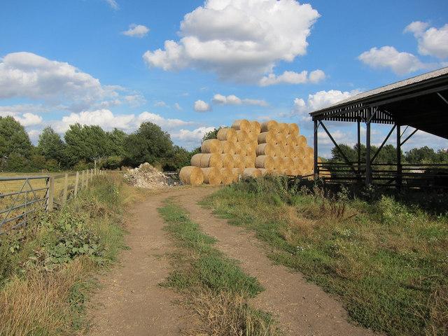 Straw bales off Long Lane