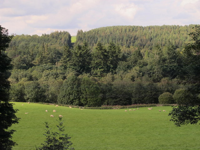 The valley of the Tipalt Burn north of Redpeth