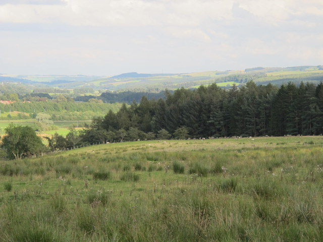 Rough pastures south of Redpeth
