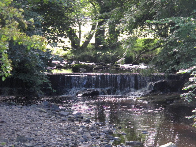 Weir on Park Burn