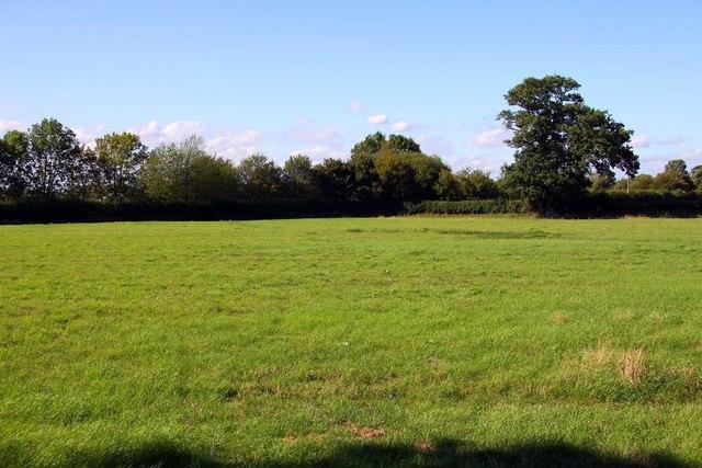 Field by Shrivenham