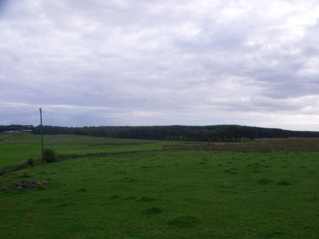Wester Jaw, Avon flood plain