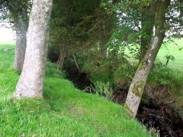 Wester Jawcraig, Avon tributary