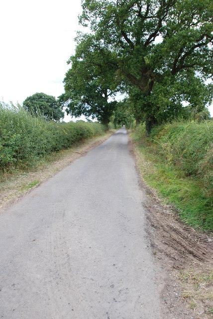 A Long Narrow Lane