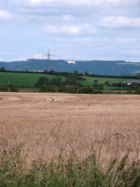 Across the fields at Birdforth