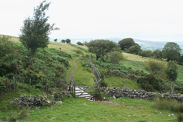 Dean Prior: Dean Moor, towards Lambs Down