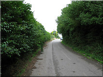 TR3256 : Dover Road, Sandwich by Nick Smith