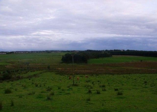 Oakersdykes, Pasture and bog