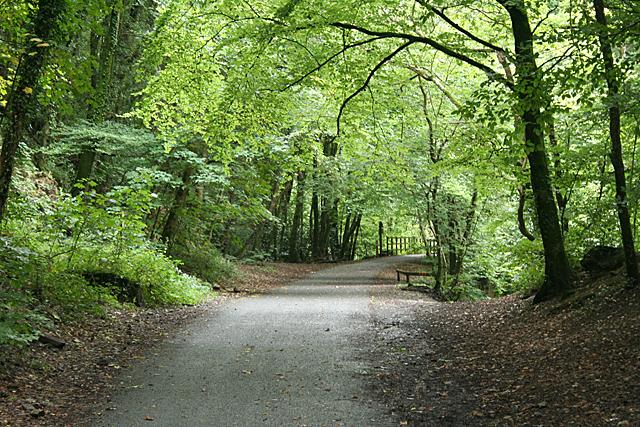 Sparkwell: West Devon Way
