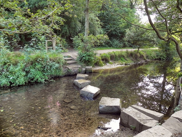 Stepping Stones Crossing Lady Brook