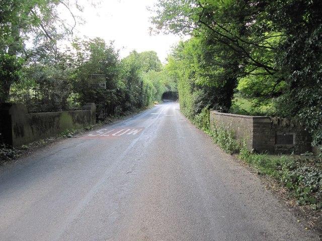 View of Ickleton Bridge