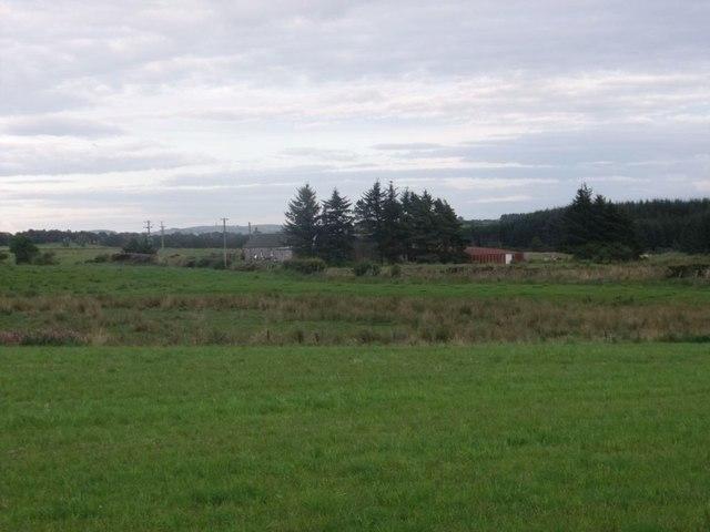Parkhead, pasture