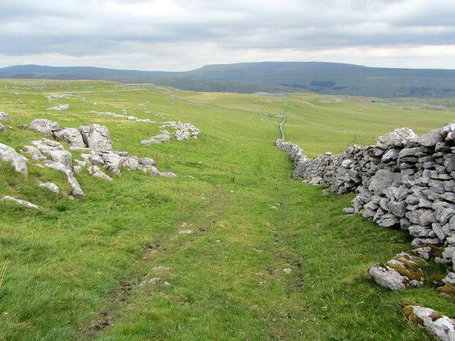 On High Kilnsey Moor