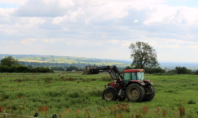 2011 : Tractor in a field seen from Chesterblade Road