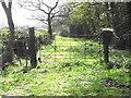 SJ8661 : Old Gate by Jonathan Kington