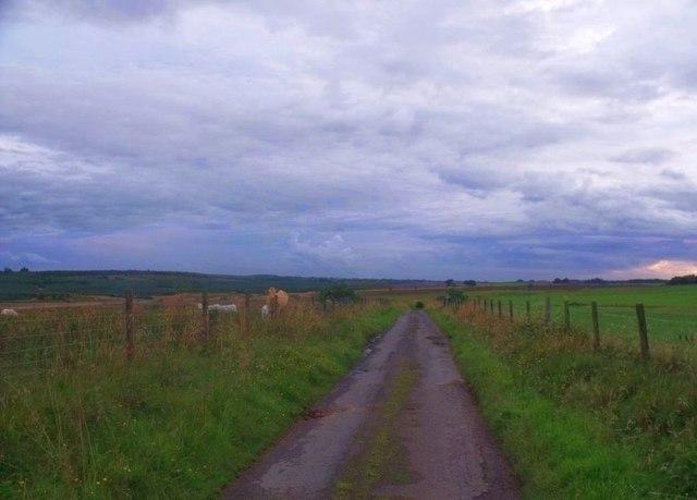 Shortrig, road west